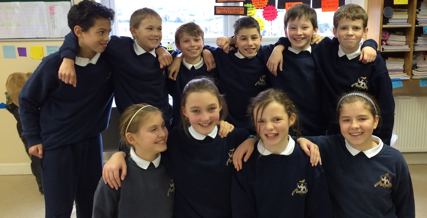 fifth and sixth class 2014-15 at Wicklow Montessori Primary School